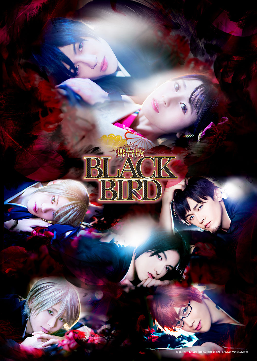 舞台版「BLACK BIRD」DVD